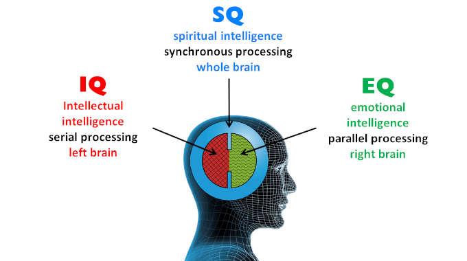 La dimensión humana en la organización