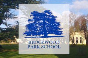 Taller de estres y confianza en brockwood park escuela jiddu krishnamurti uk con whi institute