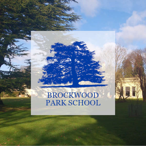 Brockwood park school
